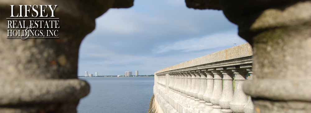Bayshore Boulevard Tampa, Florida - 2010 Photo copyrighted by D Berry Design