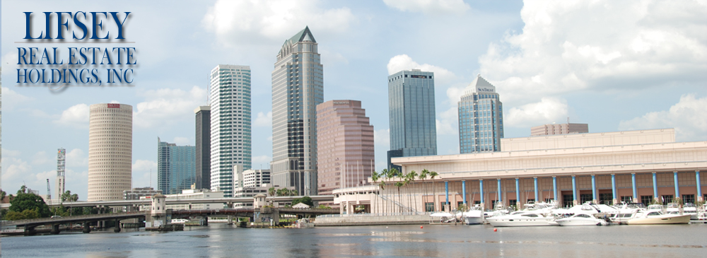 Tampa, Florida Skyline - 2010 Photo copyrighted by D Berry Design